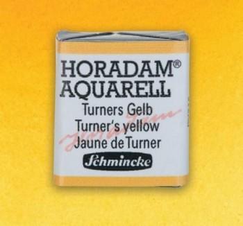 S. HORADAM S1 N.219 Amarillo de Turner