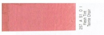 N.257 W&N OLEO GRIFFIN TINTA CARNE