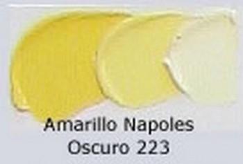 N.223 OLEO REMBRANDT AMAR.NAPOLES OSC.